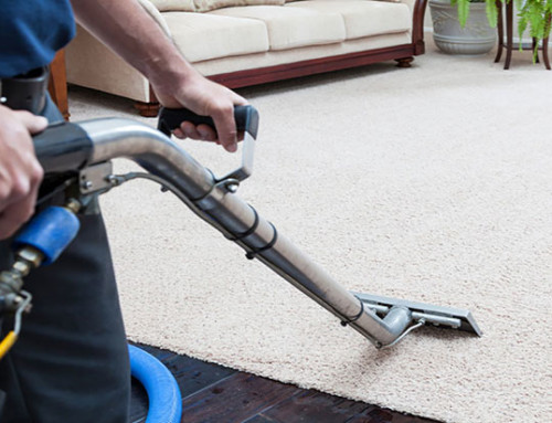 Hiring a True Steam Carpet Cleaning Professional