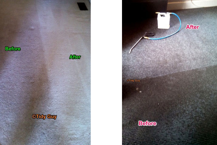 Off gray and beige carpets showing a significant improvement after being steam cleaned.
