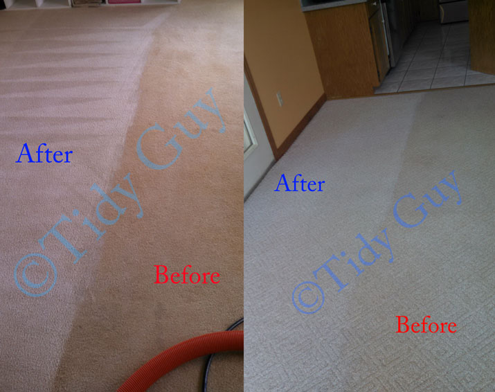 Residential carpet in two different homes showing huge difference before and after cleaning.