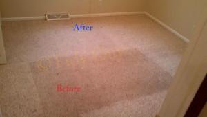 Carpet Cleaning Barboursville VA