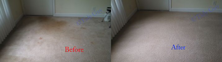 Heavily soiled carpet in an apartment showing how it looked like before and after the very low moisture cleaning.
