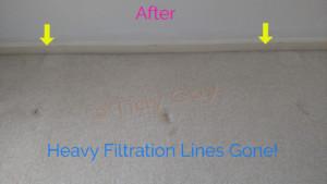 Filtration lines after