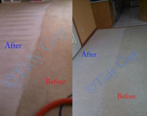 Carpet Cleaning Madison Virginia
